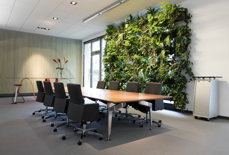 "Bild ""Otto Business:plant-ed-wall_1.jpg"""